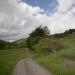 Wunderschöne Waldwege erlauben ein tolles Radfahrerlebnis (Foto: Ernst Böhm)