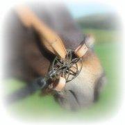 PS Blumenzaum - Lilie - Gebisslose Zäumung , Bitless Bridle